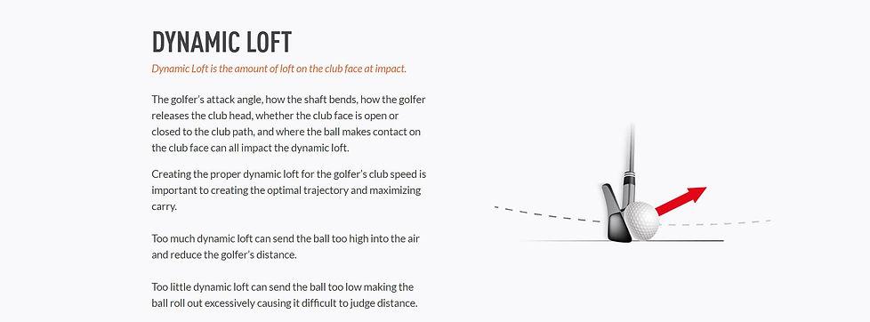 Dynamic Loft.JPG