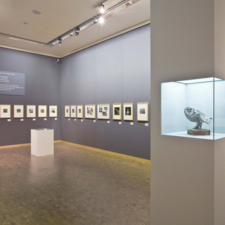 Museum Ludwig Köln: 'Ichundichundich. Picasso im Fotoporträt'