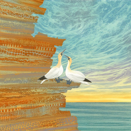 Gannets birds North East coast Northumberland print card artist Rebecca Vincent cliffs