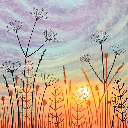 Sunset with seedheads greetings card Rebecca Vincent artist