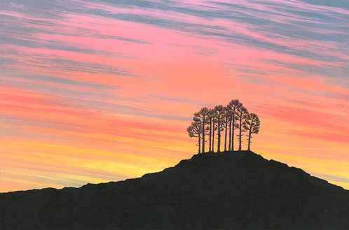 Sunset landscape painting Northumberland artist Rebecca Vincent scots pine silhouette