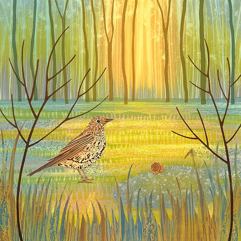 Song thrush bird woodland glade painting print North East artist Rebecca Vincent