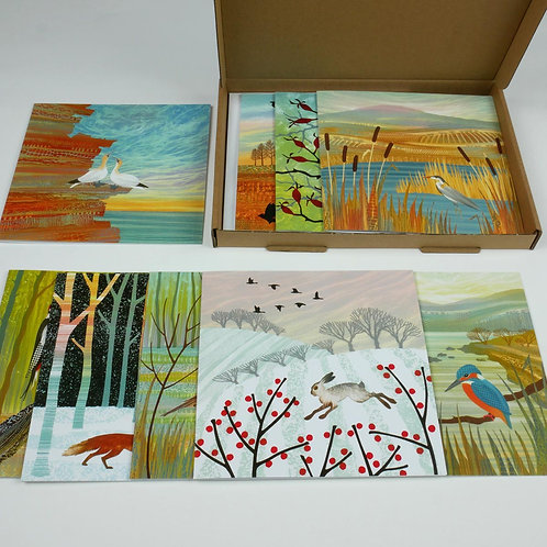 Rebecca Vincent greetings card pack animals and birds