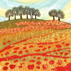 Downland Poppies