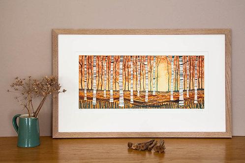 Silver Birch Autumn Gold etching framed