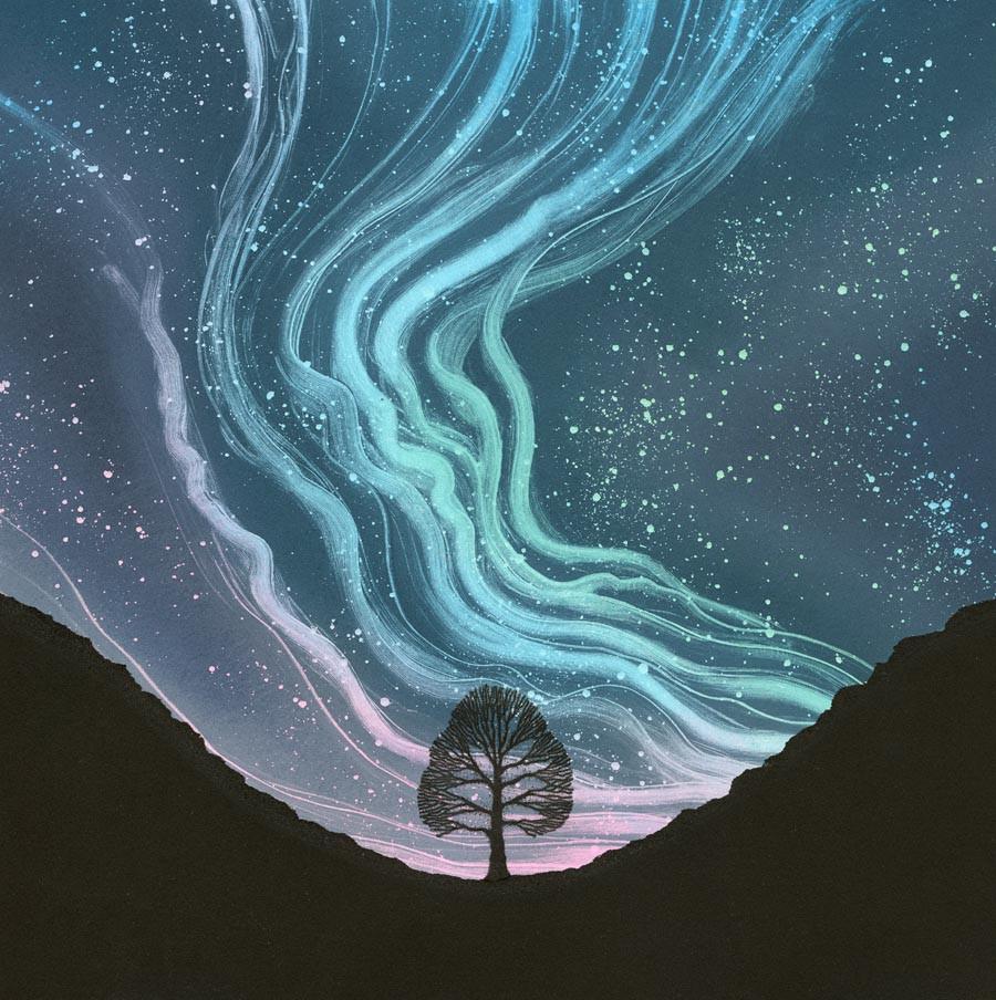 Aurora Borealis Sycamore Gap Northumberland National Park Rebecca Vincent northern lights