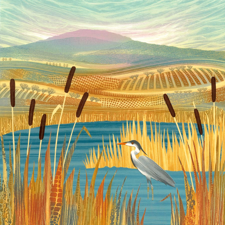 Rebecca Vincent Northumberland artists heron picture painting for bird lover pond bulrushes reed mace print