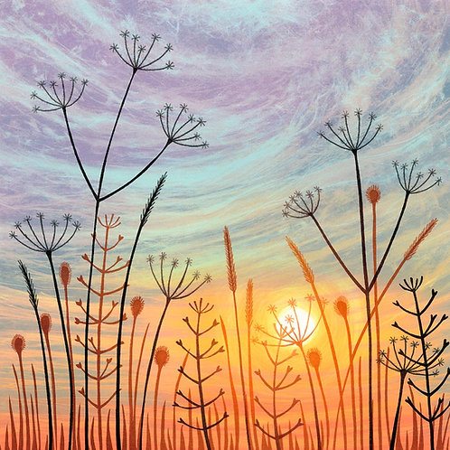 Rebecca Vincent sunset seed heads print Angie Lewin umbellifers back lighting