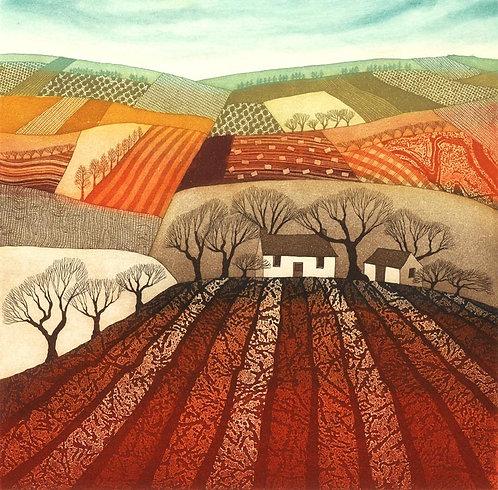 Rebecca Vincent Northumberland artists patchwork fields landscape art greetings card