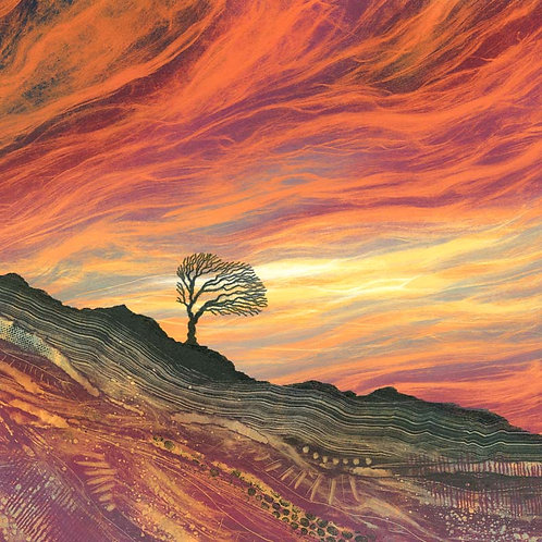 Artist greeting cards lone tree sunset sky yorkshire landscape