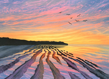 Sunset Seas and British Birds