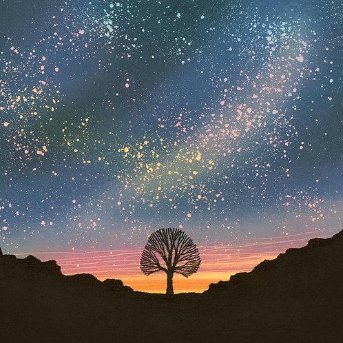 Night sky Sycamore Gap card Hadrian's Wall Northumberland National Park dark skies Rebecca Vincent art