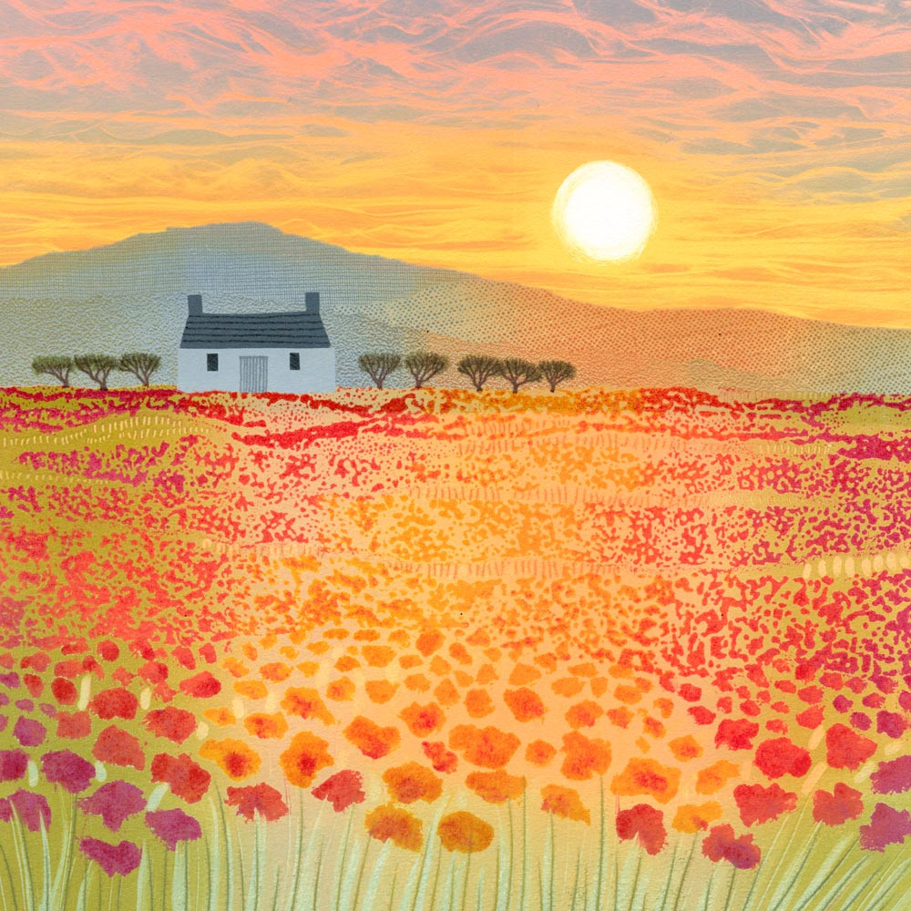 Rebecca Vincent landscape art field of poppies poppy sunset cottage scotland painting