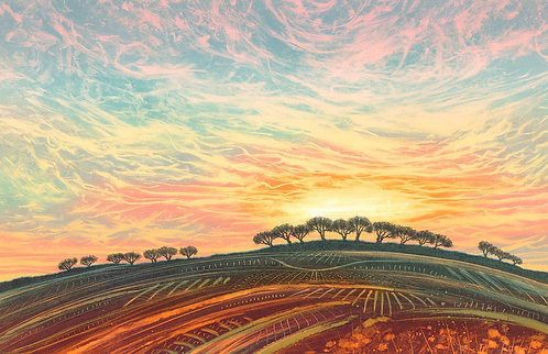 Summer Sunset landscape longest day trees Rebecca Vincent Northumberland
