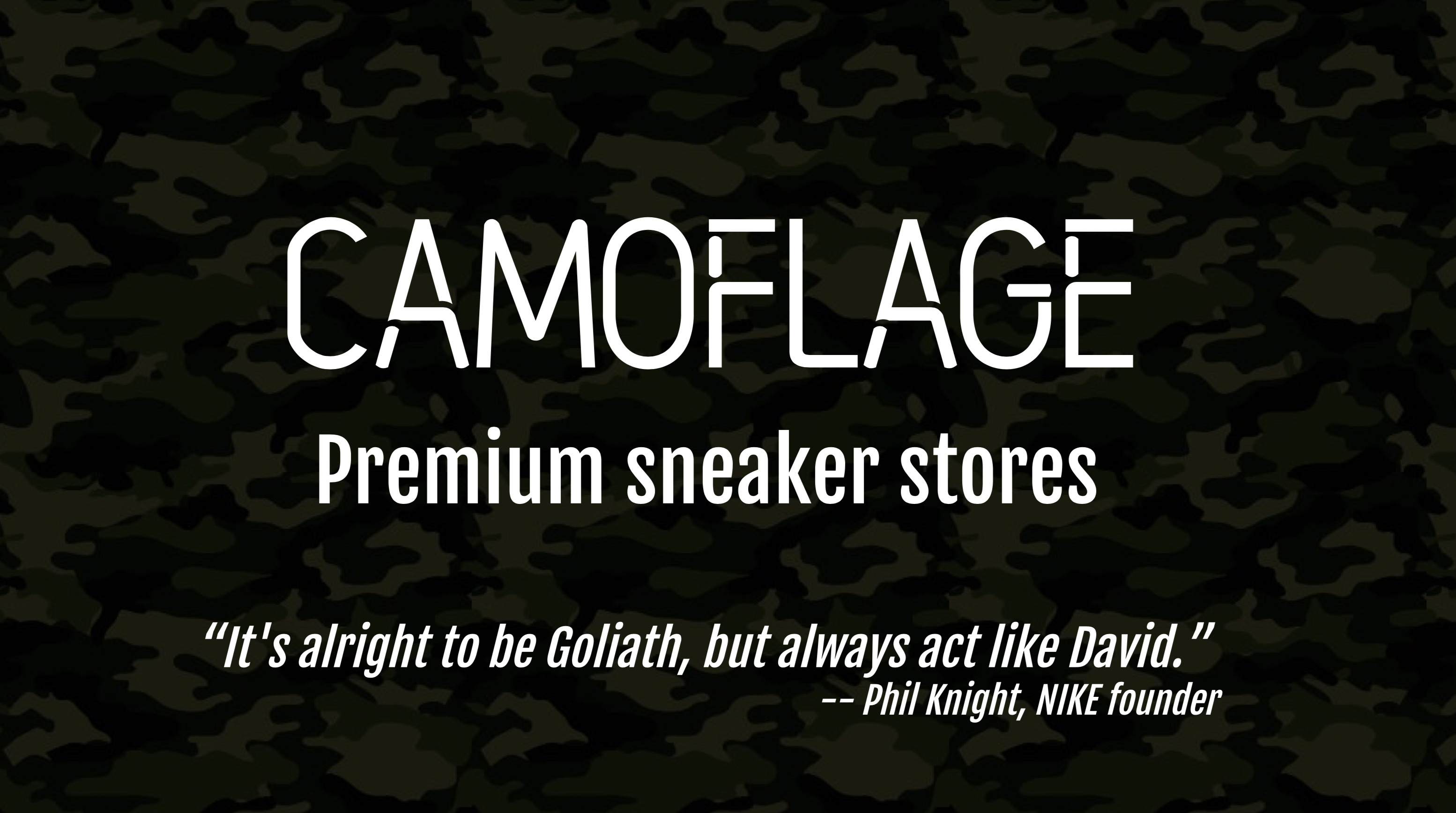 CAMOUFLAGE2