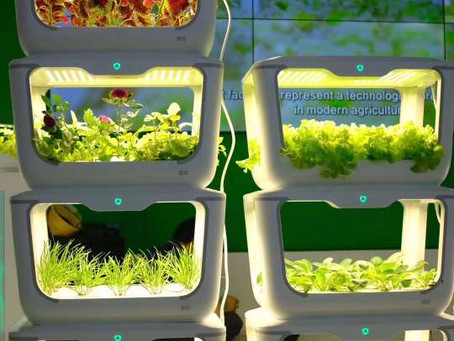 The New Age of Growing Food