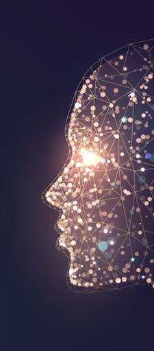 PNL - Programação Neuro Linguística