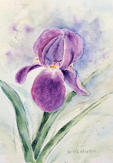 Wonderful women and watercolours worksho