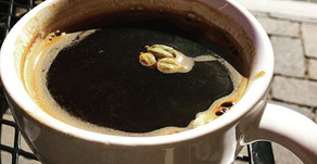 Coffee Has it's Time and Place in an Ayurvedic Lifestyle