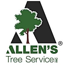 logo with trademark.png