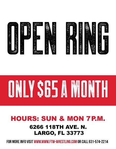 Open Ring_Tampa_C.jpg