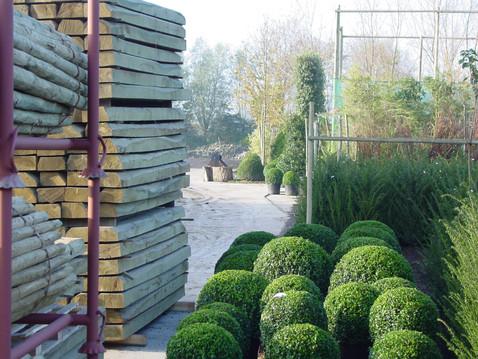 Plantation pépinière ART GREEN