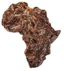 Driftwood Africa