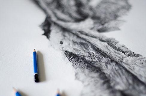 AvanthiRavindran_Pencil+bark.jpg