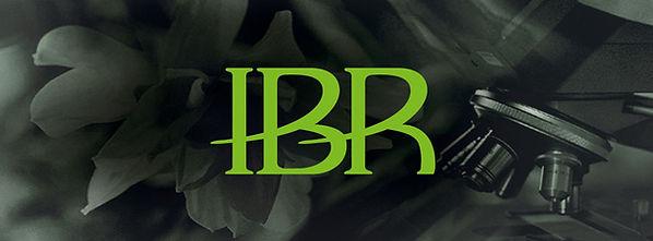 IBR_Logo.jpg