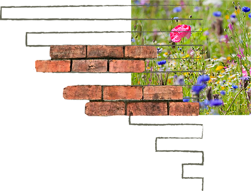 brick path and lawn sketch.png