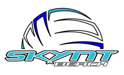 """SKYNT Beach Tumbler Decal (3.5""""x2"""")"""
