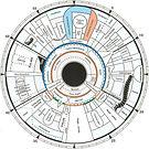 Iris_Topografiekarte.jpg