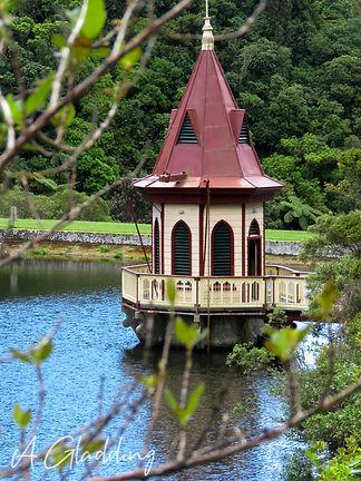 Zealandia8.jpg