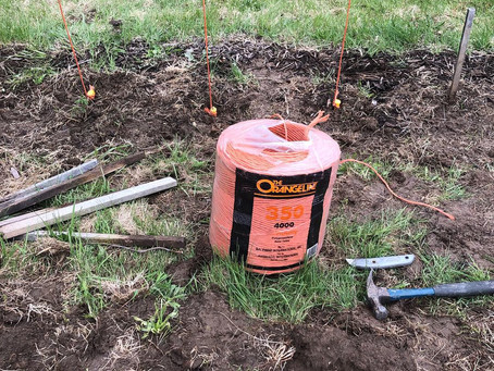 How i built my Hops gardens