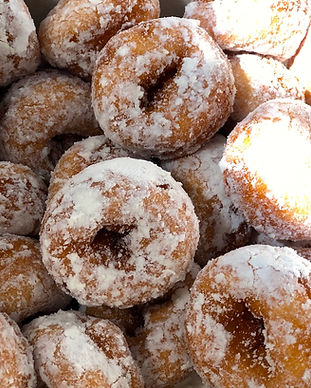 mini donuts - powdered sugar.JPG