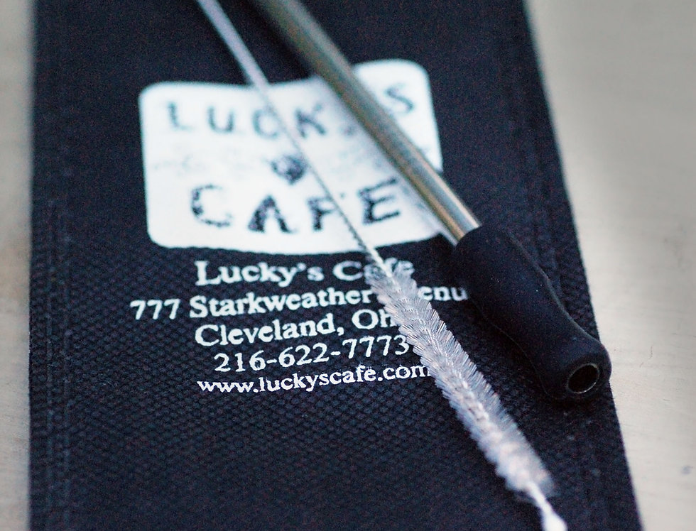 Lucky's Stainless Steel Straw Kit