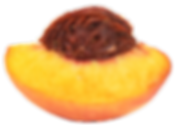 logo-site_transparent_peachh.png