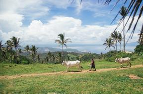 Batangas-Philippines-42.jpg