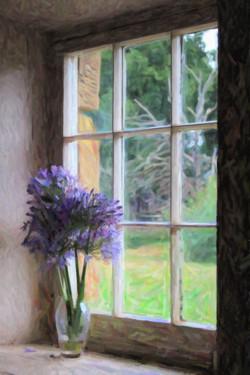 Window wondering