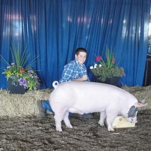 Lawrence County Fair