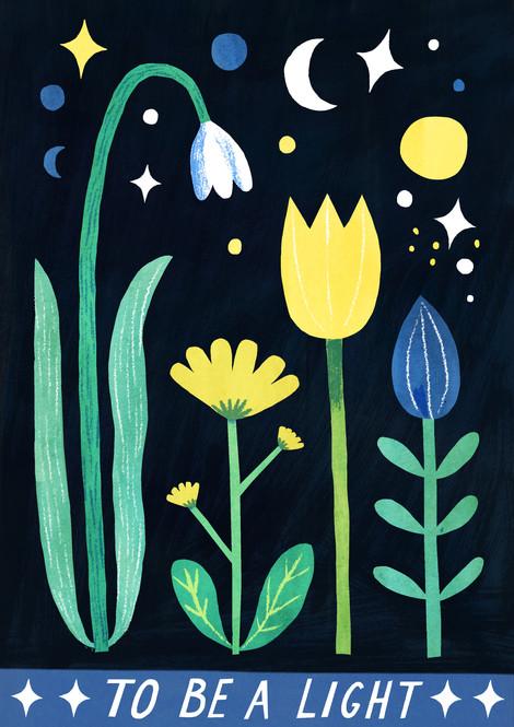 Night Flowers - Personal Work