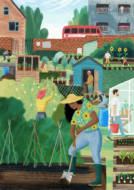 Allotments - Personal Work