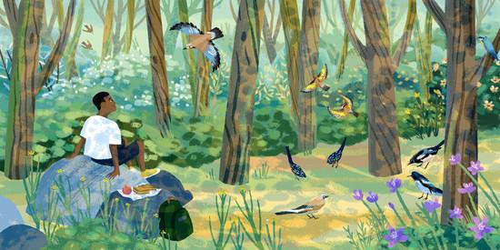 CatherinePape-Birds.jpg
