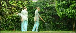 watering-2012
