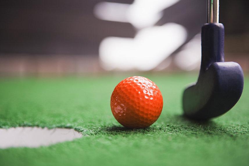 Mini Golf Putt Putt Raleigh ParTee Shack