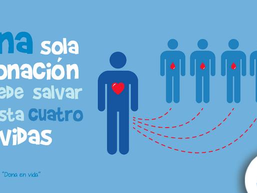 10 cosas que no sabías de la donación de sangre