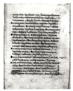 11. Beinecke MS 401, f. 12r