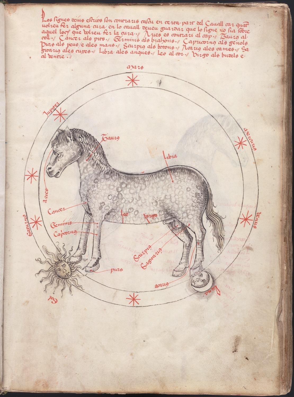 99. Beinecke MS 454, f. 1r (color).