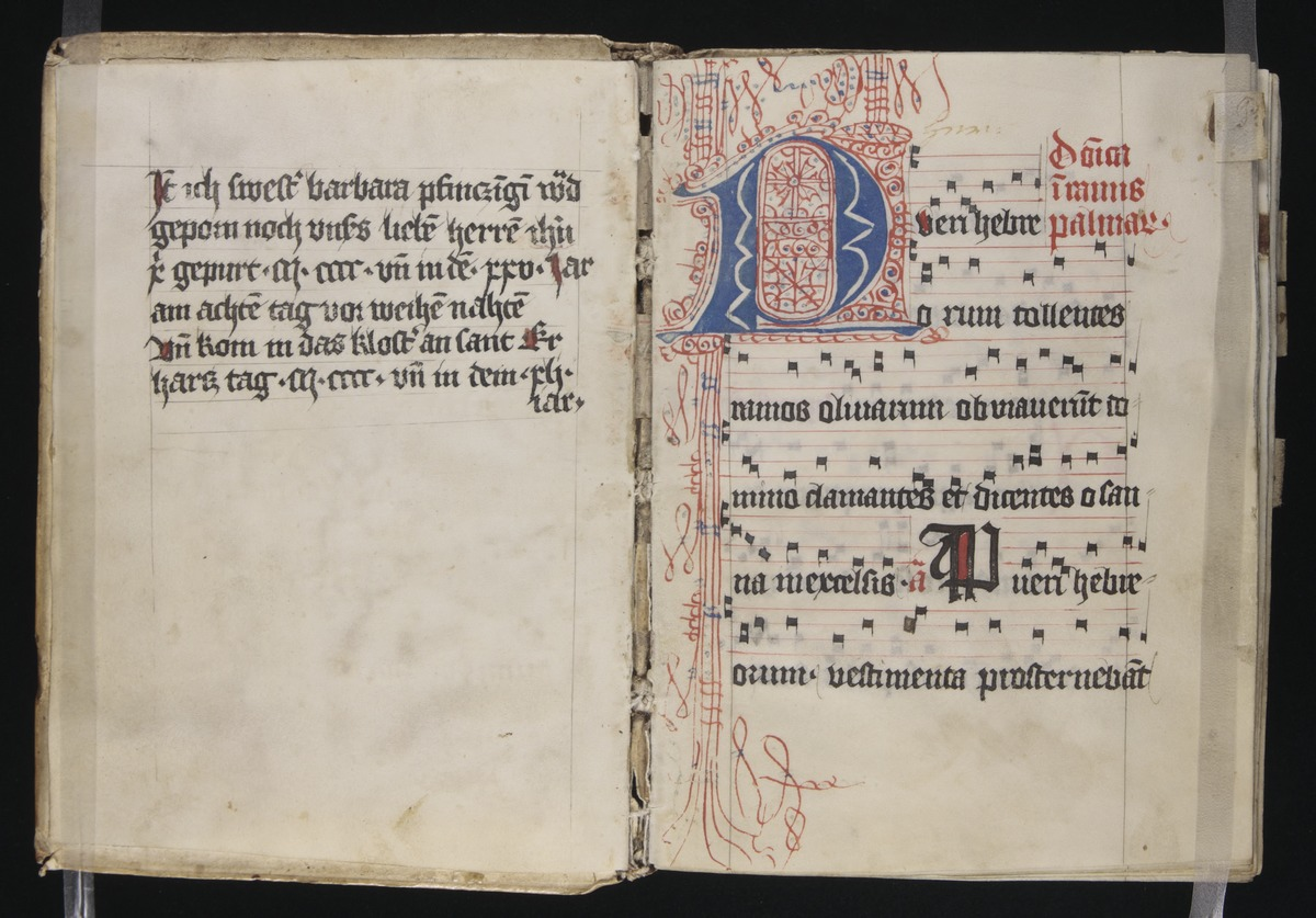 75. Beinecke MS 205 ff i-1r (color)