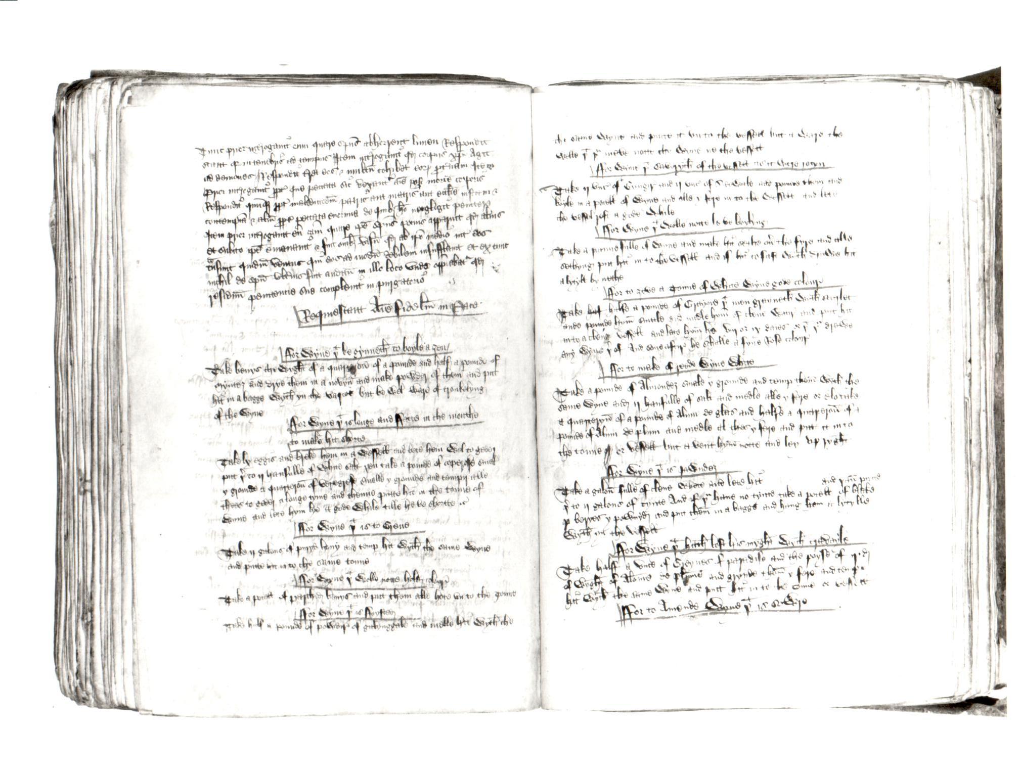 97. Beinecke MS 163, ff. 122v-123r